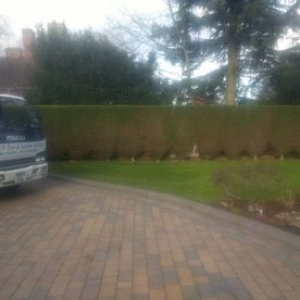rowan tree and garden service