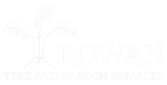 rowan tree surgery logo