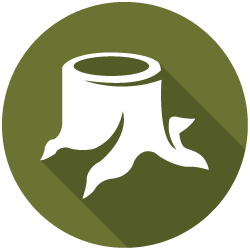 site clearance icon